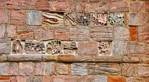wall-630943_640